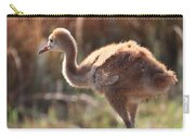 Sweet Juvenile Sandhill Crane Carry-all Pouch