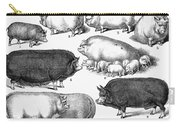 Swine, 1876 Carry-all Pouch by Granger