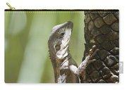 Ta-ta Lizard Carry-all Pouch