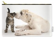 Tabby Kitten & Great Dane Pup Carry-all Pouch