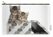 Tabby Kittens In Gift Box Carry-all Pouch