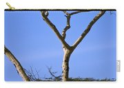 Tall Serengeti Tree And Baboon Carry-all Pouch