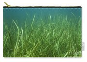 Tapegrass In Freshwater Lake Carry-all Pouch