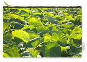 Taro Plantation Carry-all Pouch