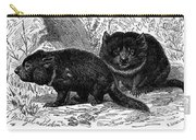 Tasmanian Devil Carry-all Pouch