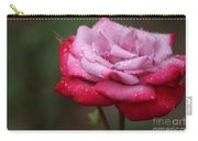 Tears From Heaven Carry-all Pouch