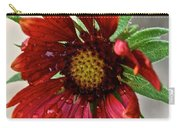 Teary Gaillardia Carry-all Pouch