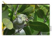 Tennesse Warbler Eating Mangrove Carry-all Pouch