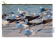 Terns Carry-all Pouch