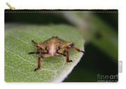 Terrestrial Turtle Bug Carry-all Pouch by Ted Kinsman