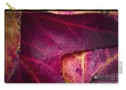Textured Layers Carry-all Pouch