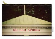 The Big Red Spring Carry-all Pouch by Lisa Russo