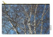 The Birch Carry-all Pouch