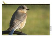 The Bluebird Of Happiness Carry-all Pouch