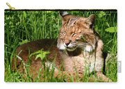 The Bobcat's Afternoon Nap Carry-all Pouch