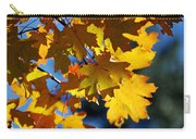 The Colors Of Autumn In Arizona  Carry-all Pouch