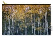 The Colors Of Fall II Carry-all Pouch