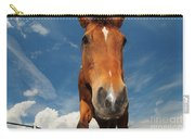 The Curious Horse Carry-all Pouch