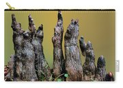 The Cypress Knees Chorus Carry-all Pouch