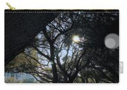 The Day's Reflection Limited Edition Bodecoarts Carry-all Pouch