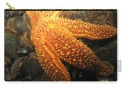 The Great Starfish Carry-all Pouch by Paul Ward