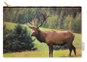 The King Of Winslow Hill Carry-all Pouch by Lori Deiter