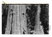 The Mariposa Grove In Yosemite Carry-all Pouch