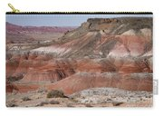 The Painted Desert  8013 Carry-all Pouch