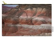 The Painted Desert  8018 Carry-all Pouch
