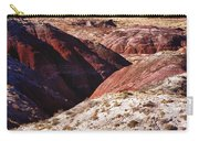 The Painted Desert  8023 Carry-all Pouch