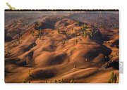 The Painted Dunes Carry-all Pouch