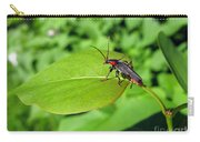 The Rednecked Bug On The Leaf Carry-all Pouch