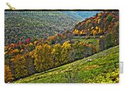 The Road To Glady Wv Painted Carry-all Pouch