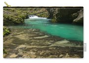 The Soteska Vintgar Gorge In Autumn Carry-all Pouch