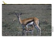 Thomson Gazelle And Newborn Calf Carry-all Pouch
