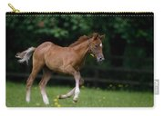 Thoroughbred Horse, National Stud Carry-all Pouch