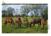 Thoroughbred Horses, Yearlings, Ireland Carry-all Pouch