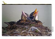 Three Baby Robins Carry-all Pouch