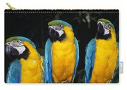 Three Parrots Carry-all Pouch
