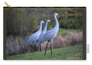 Three Sandhills On The Hill Carry-all Pouch