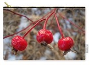 Three Wild Rose Hips Carry-all Pouch