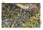 Tidal Pool With Rockweed Carry-all Pouch