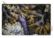 Tide Pool Habitat Carry-all Pouch