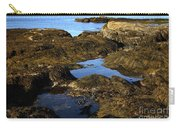 Tidepool In Maine Carry-all Pouch