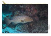 Tiger Grouper Swimming Along The Bottom Carry-all Pouch