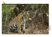 Tiger Panthera Tigris Six Month Old Carry-all Pouch