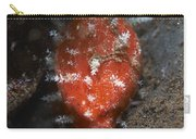 Tiny Red Yellow And White Cowrie Carry-all Pouch