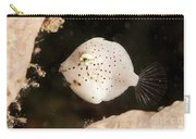 Tiny White Filefish With Small Black Carry-all Pouch