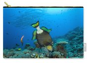 Titan Triggerfish Picking At Coral Carry-all Pouch