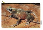 Toad Atelopus Senex On A Leaf Carry-all Pouch